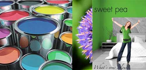 Sweet pea Paints